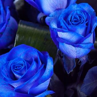 Синий свадебный букет невесты (Obradoval.ru) - фото 13